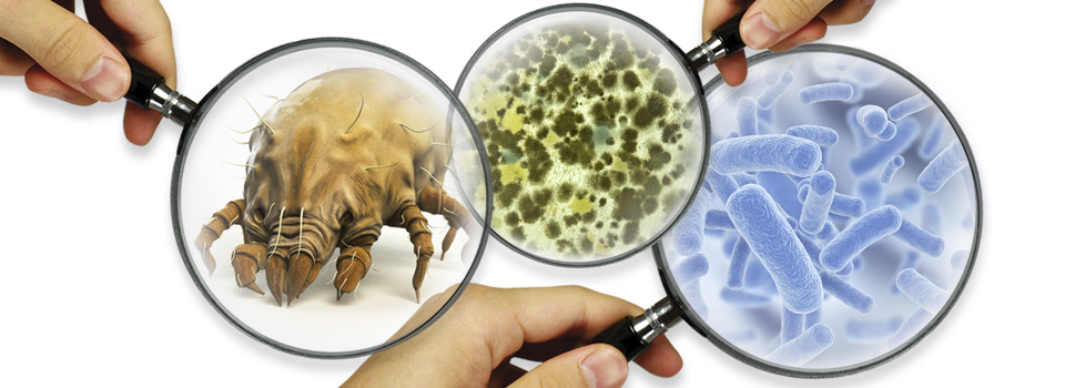 Sem manutenção, ar-condicionado pode causar infecções e até matar